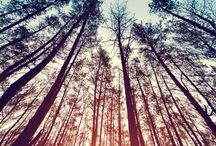 pics & nature