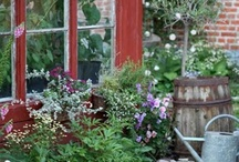 Garden and plant ideas / by Valarie Riggs