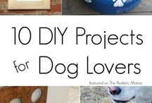 Doggie Projects for Dog Owners and Dog Lovers