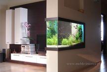 Встроенные аквариумы / Аквариумы встроенные в интерьер