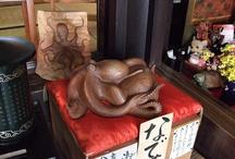 Cephalopod / Cool Octopus & Squid Stuff!