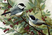 Ptaki malowane