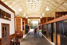 Horse - Dream Barn
