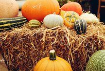 Autumn style ideas