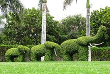 jardins espetaculares