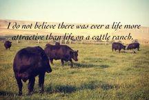 Farm life, where I belong  / by Heidi Nyman