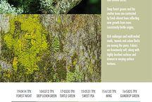 trend colore autunno inverno