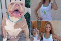 Show your Rescue Pride / People who have rescued a dog are proud and want a way to share their story and show their pride.  How do you show your pride?