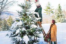 Árvores, Natal não, folhagens, flires