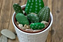 cactus n°2