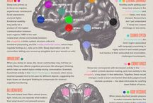 Brain Effects