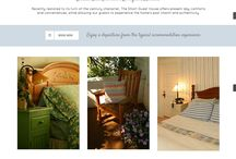 Our Work / Our most recent web projects!