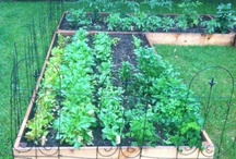 Managing the Home: Gardening/Preserving Food