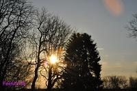Morgensonne - Morningsun / Ist es nicht herrlich, wenn die Sonne schon am frühen Morgen strahlt! Morgensonne, morningsun, Sonnenaufgang, sunrise, Landschaft, Landscape, Sonne, sun,  | www.FeenArt.de | Claudia Böttcher