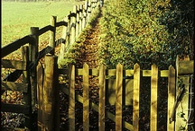 Fences and Gates... /  meet me behind the picket fence... / by Marie Wilfinger