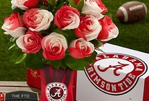 Alabama / Alabama Football / by Julie Sobeck