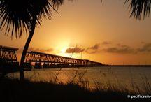 florida / Florida