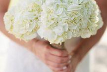 Wedding / white