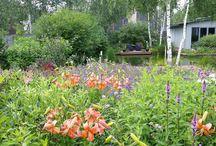 russian garden