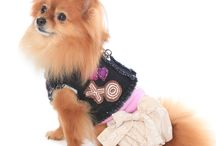 The Hugs and Kisses Denim Harness Vest and Puppy Bubble Dress / The Hugs and Kisses Denim Harness Vest with coordinating Puppy Bubble Dress