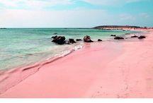 Pink / by Anahera Wahini