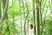 新緑 Green / 京都の新緑でのウェディングフォト