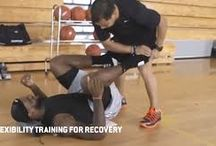 LeBron James @ PHYSIOTHERAPY: / LeBron James Recovery From Recurrent Ankle Sprains