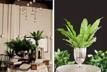 Urban Industrial Green Wedding