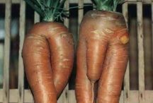 Funny Vegetables & Fruits / Süße Früchtchen / Created by Nature