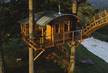 tree houses / o domoch v korunach