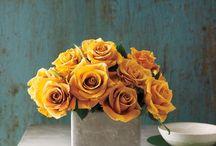 Flower tips / Floristry