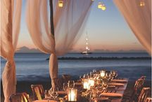 Ceremony and Reception Ideas / Details for wedding ceremony and receptions
