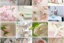Brand Inspirtation / by Aimee Pool Photography