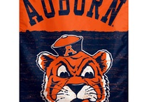Love those Auburn Tigers / by Betsy Schmitt