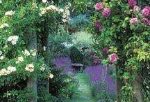 ガーデン!