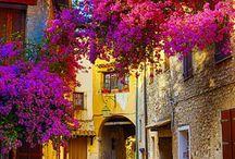 Provence / Прованс