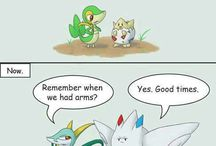 Pokemon / Pokemon dingen