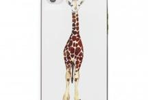 Giraffe Love For @augiMDD