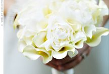White Wedding Flowers / by zusie