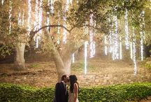 Wedding Photography Ideas / by Cassandra Lynne