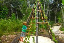 Outdoor Play / by Mandy Shelton-Johnstone