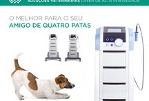 BTL Portugal - Veterinária