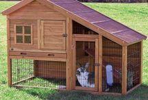 domceky pre zvierata