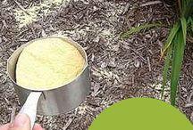 Natural Herbicides
