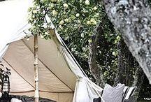rvs.camping glamping