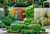 Gardening / by Elizabeth Young