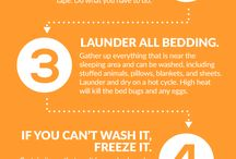 Bed Bugs Remedy