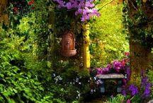 ༺ ♥ Garden ♥ ༻