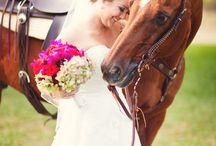 Lovas esküvő | Wedding with horses