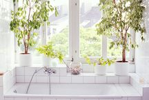 TUBS / by JBirdHome *